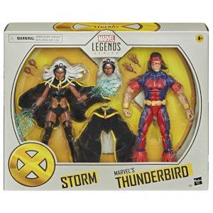 Hasbro Marvel Legends X-Men Storm & Thunderbird 2-Pack Action Figure
