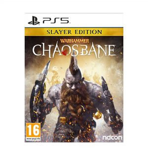 PS5: Warhammer Chaosbane Slayer Edition